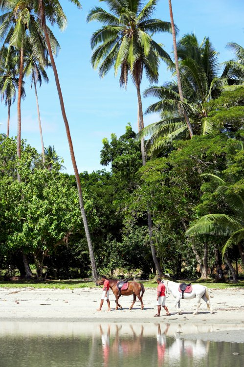 Fiji Honeymoon Itinerary - Horseback Riding   Namale