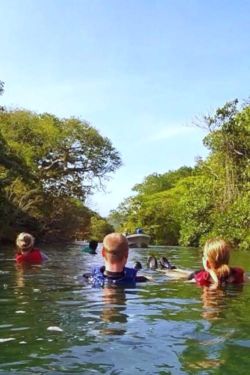 fiji-salt-river-adventure