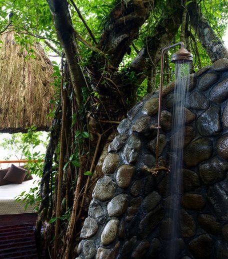 room-garden-tropical_03