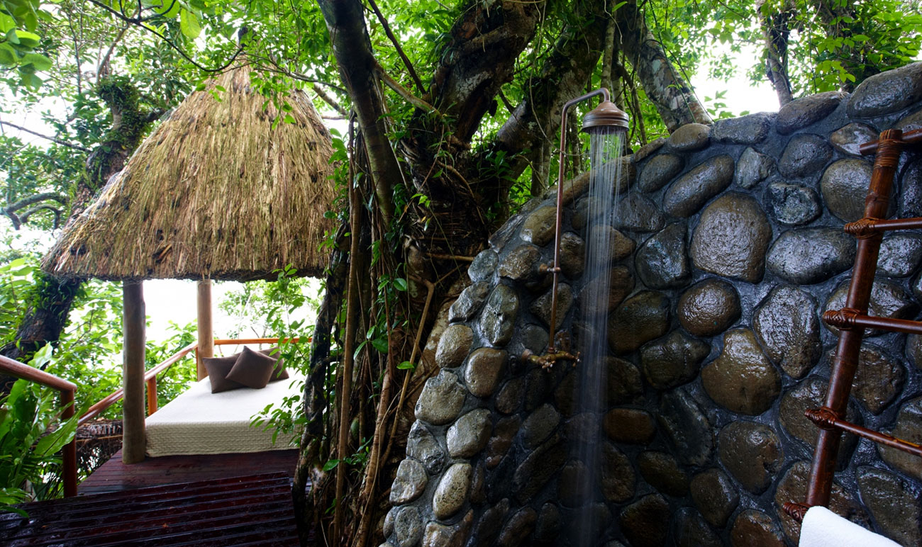 room-garden-tropical_03