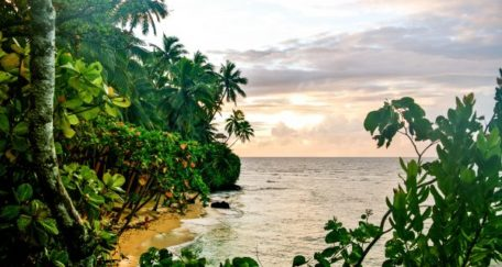 top-luxury-hotels-in-fiji-tripadvisor-namale