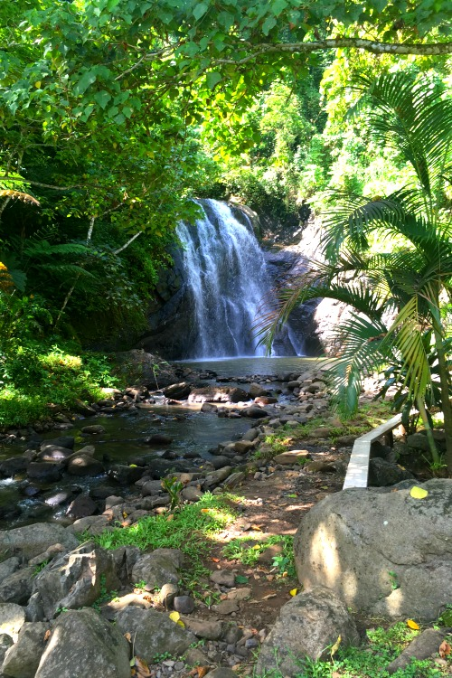 fiji-waterfalls