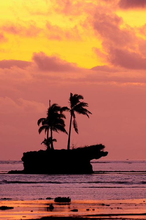Fiji Island Tours + Island Excursions | Namale Resort and Spa