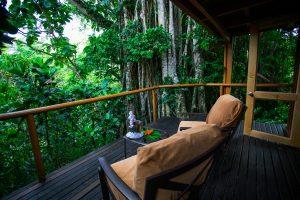 garden-tropical-fiji-bure